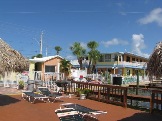 show user reviews palms waterfront resort hotel marina pete beach florida