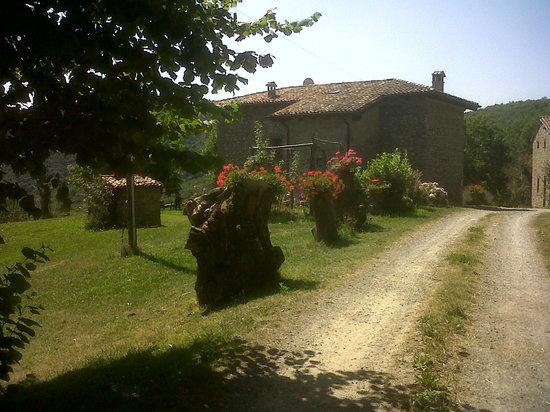 Photo of La Piana dei Castagni Castel d'Aiano
