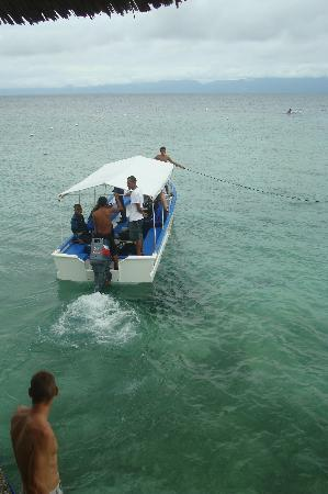 Dolphin-House Resort-SPA-Diving: uitstekende duikfaciliteiten