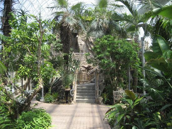 Attirant Myriad Botanical Gardens: Crysal Bridge Tropical Conservatory