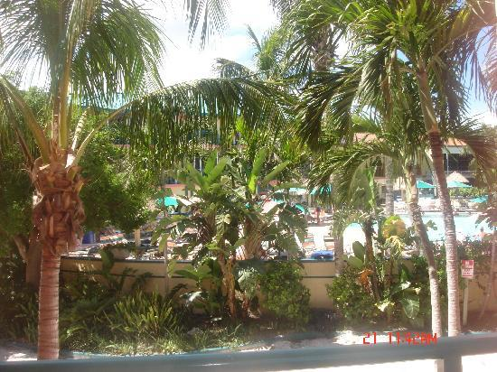 'Tween Waters Island Resort & Spa: Room view to pool