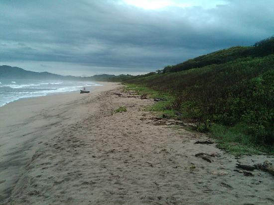 Playa Grande Surf Camp : beach