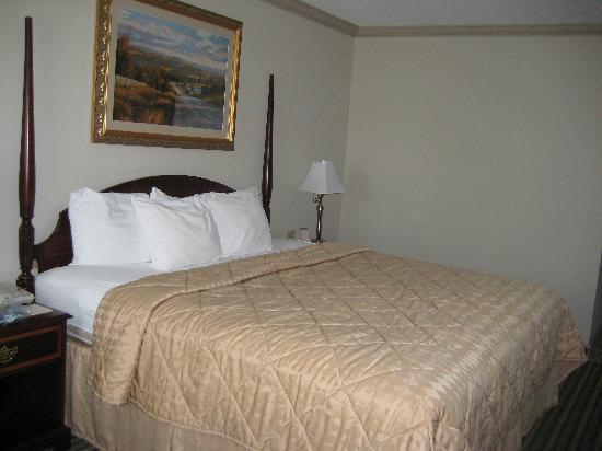 Comfort Inn: Nice looking bed