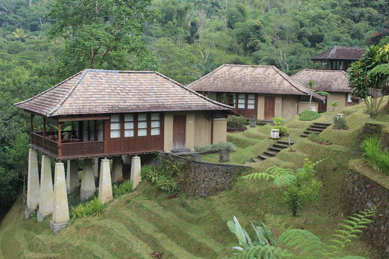 Bagus Jati Health & Wellbeing Retreat : Superior Villas