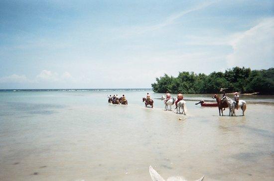 Chukka Caribbean Adventures : Going for a little swim ; )