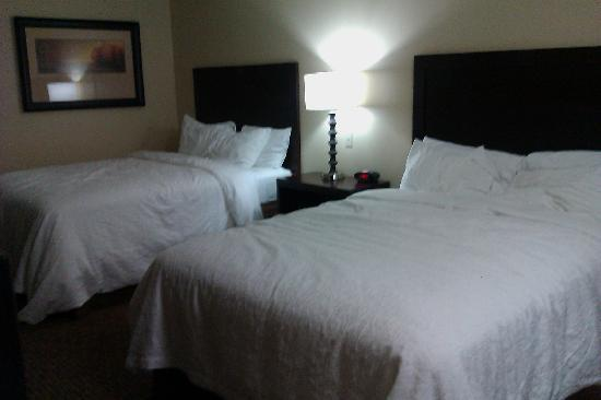 BEST WESTERN PLUS CottonTree Inn: The room we stayed in~ wonderful!