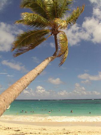 Hotel Riu Naiboa : Praia particular do Hotel - Mar do Caribe!