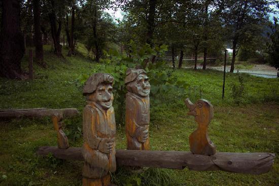Nad Cheremoshem: Garden detail