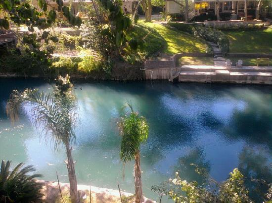 The Resort at Schlitterbahn: View from Lodge guest deck