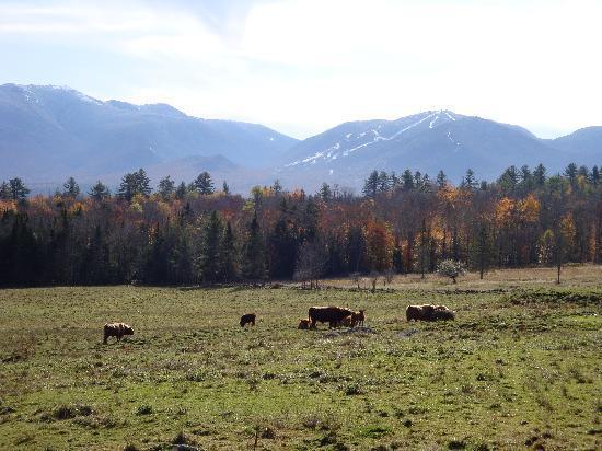 Franconia-Sugar Hill-Easton: Farm and Mount Lafayette from Sugar Hill