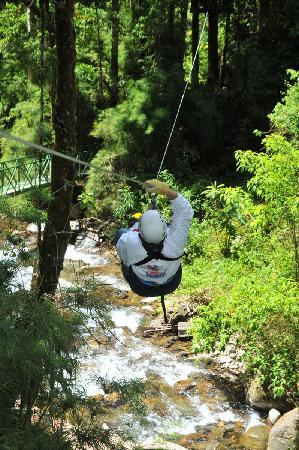 Canopy Tour at Hotel Trogon Lodge: Flying over the Savegre River