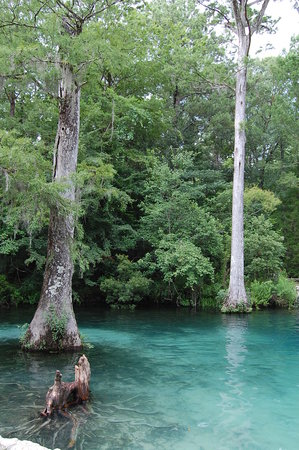 Ponce de Leon, FL: The crystal clear water is deeper than it looks here