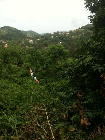 Rain Forest Zipline Corp.: loving Life