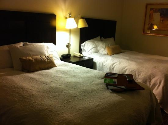 Hampton Inn Kingston: double room