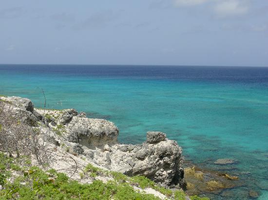 Tradewind Guest Suites on Salt Cay : Beautiful views