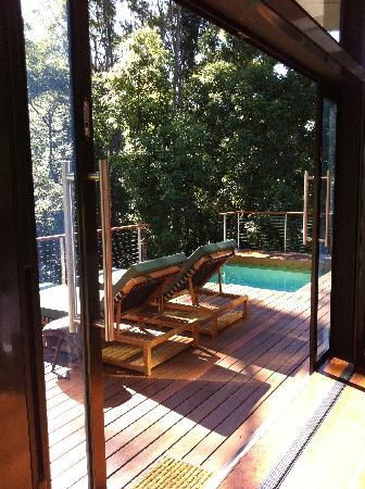 Crystal Creek Rainforest Retreat: private pool and rainforest