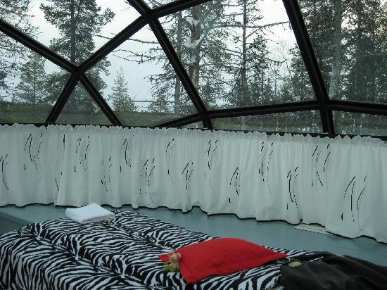 Kakslauttanen Arctic Resort: My igloo.