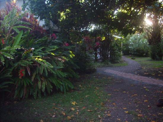 Hostal Aukara Rapa Nui: Camino a las habitaciones.