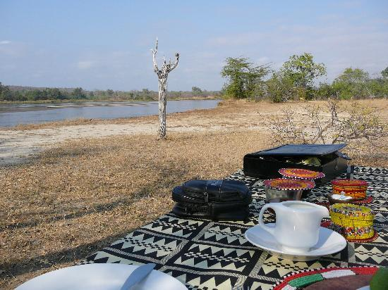 The Retreat Selous: Breakfast in the Bush