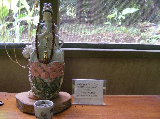 Akiko's Buddhist Bed and Breakfast : In the Mango Tree Cottage