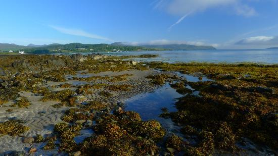 Caberfeidh Bed & Breakfast : On the shore 6.30 am