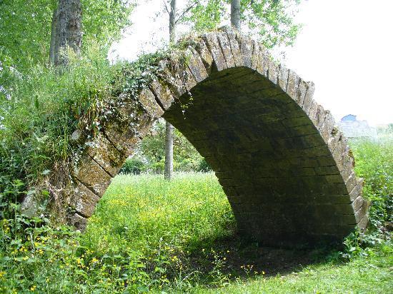 Le Moulin des Foulons : Pont pres de Loches