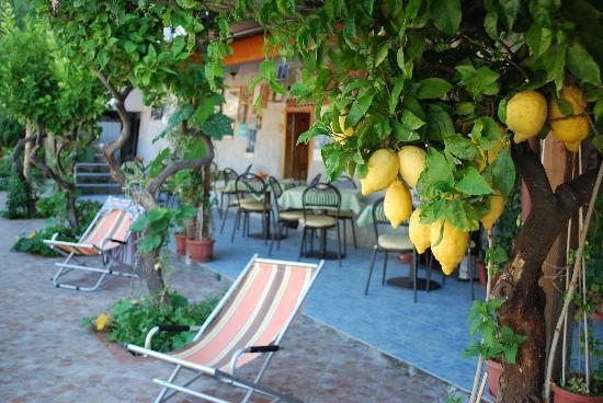 Bed and breakfast Villa Marietta: qui si domina il mondo