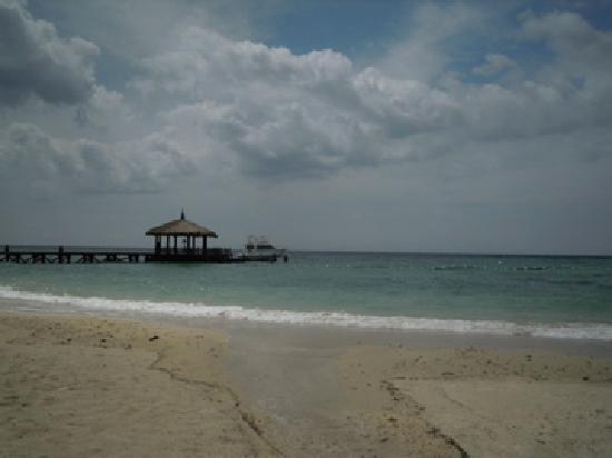 Pulchra: Beach
