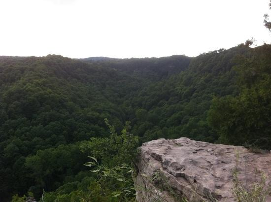 Spencer Gorge Conservation Area: view from the peak.