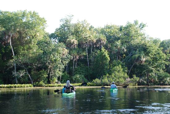 The Chassahowitzka Hotel: Kayaking the Chazz