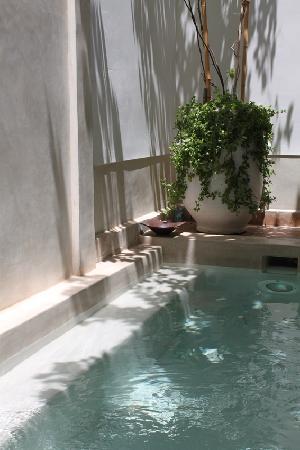 Riad les Orangers d'Alilia Marrakech : Piscine