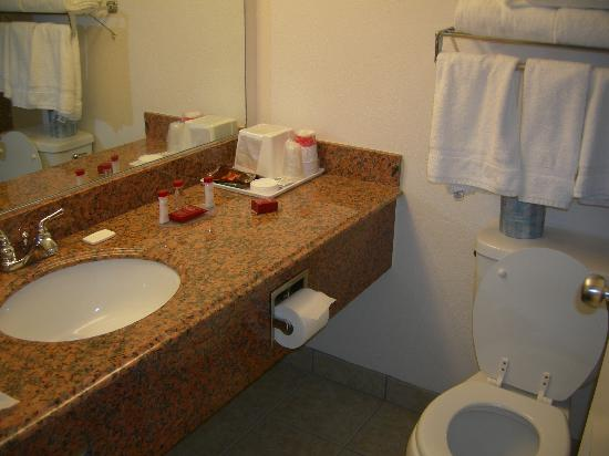 Ramada Medford Hotel and Conference Center: Bathroom