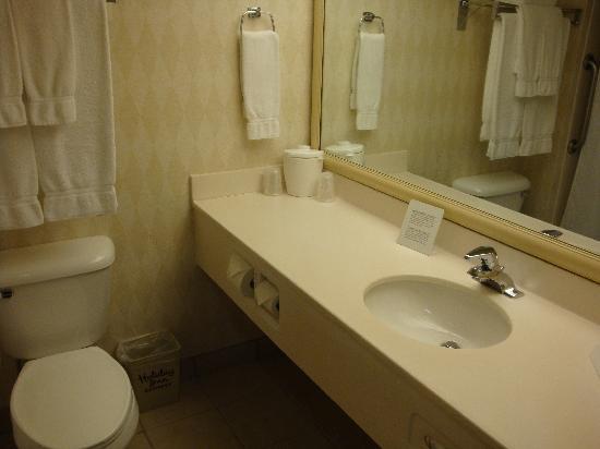 Holiday Inn Express Hotel & Suites Burlington: Bath