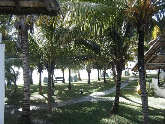 Hotel Alidou: La vue depuis la chambre, au bout la plage