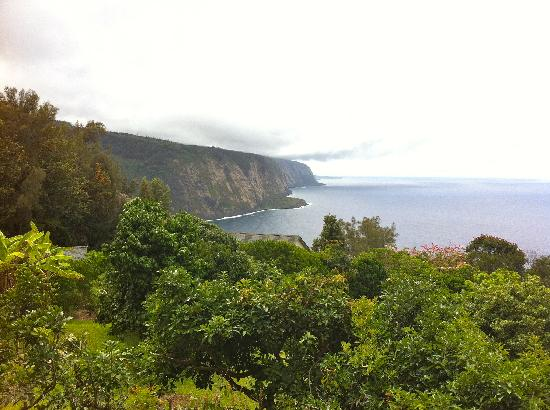Hale Kukui: What a view
