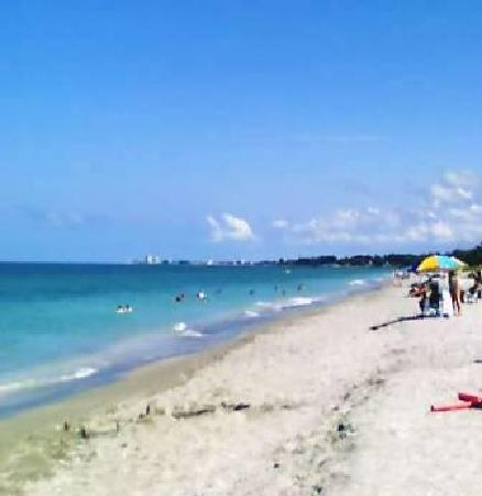 Turtle Beach Siesta Key Sarasota Florida