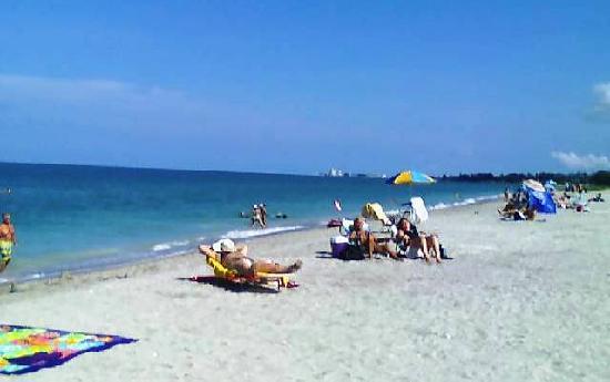 Turtle Beach Siesta Key Sarasota Florida