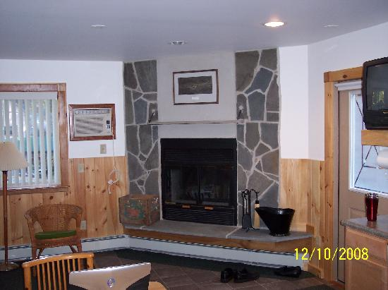 Slide Mountain Forest House: Apartment Fireplace