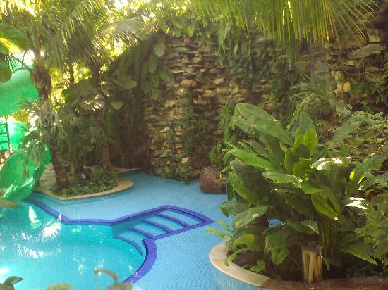 Hotel Beira Rio Palace : Swimming Pool