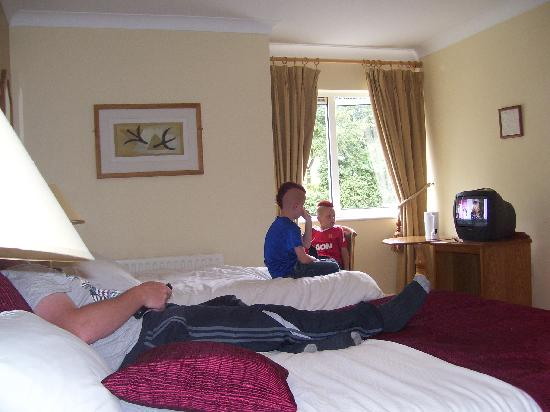 The Farmer's Kitchen Hotel : relaxing in the room