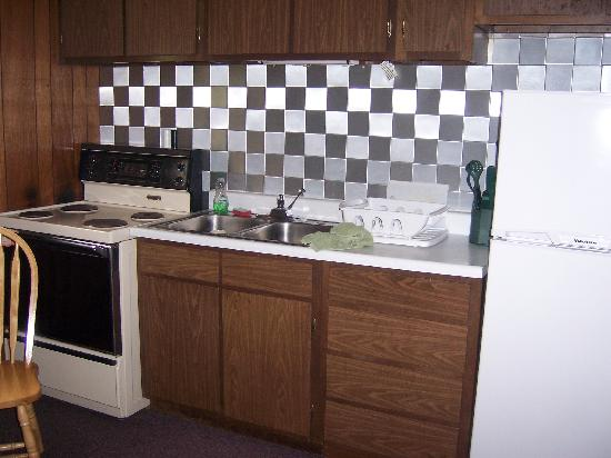 Homestead Motel: kitchen of unit