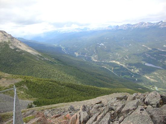 HI-Jasper : Hike 2 hrs to the top of Whistler Mt @ hostel