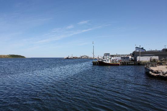 Bay Wind Suites: View 2