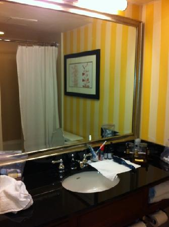Atlanta Marriott Northwest at Galleria: Turn-around bathroom