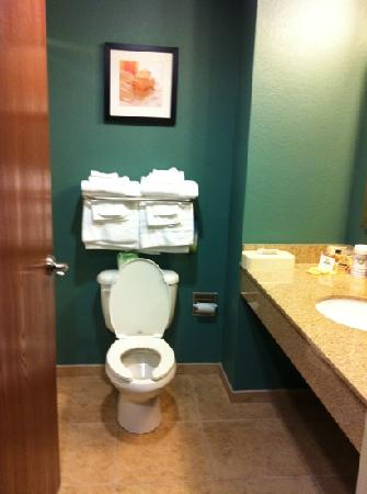Days Inn Palm Coast: bathroom