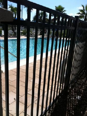 Days Inn Palm Coast: pool