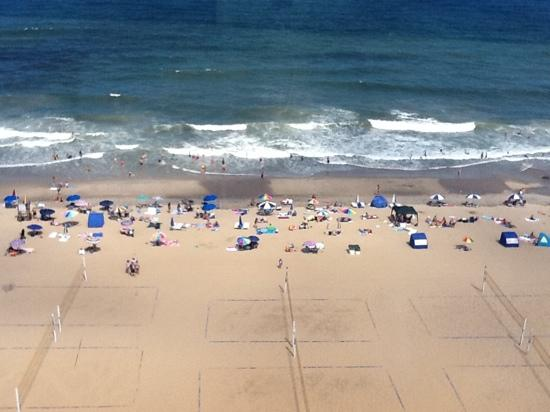 View From The 12th Floor Picture Of Residence Inn By Marriott Hilton Virginia Beach Oceanfront Hotel Va