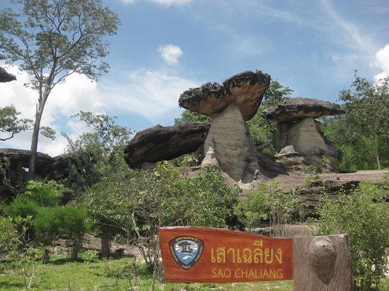 Ubon Ratchathani Province, Thái Lan: Mushroom shaped stones Pha Taem National park