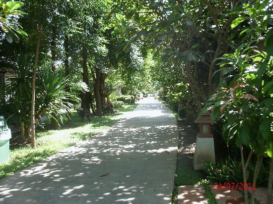 River Kwai Bridge Resort: Walkway through resort