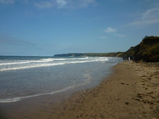 The Bay: The beach looking towards Bempton